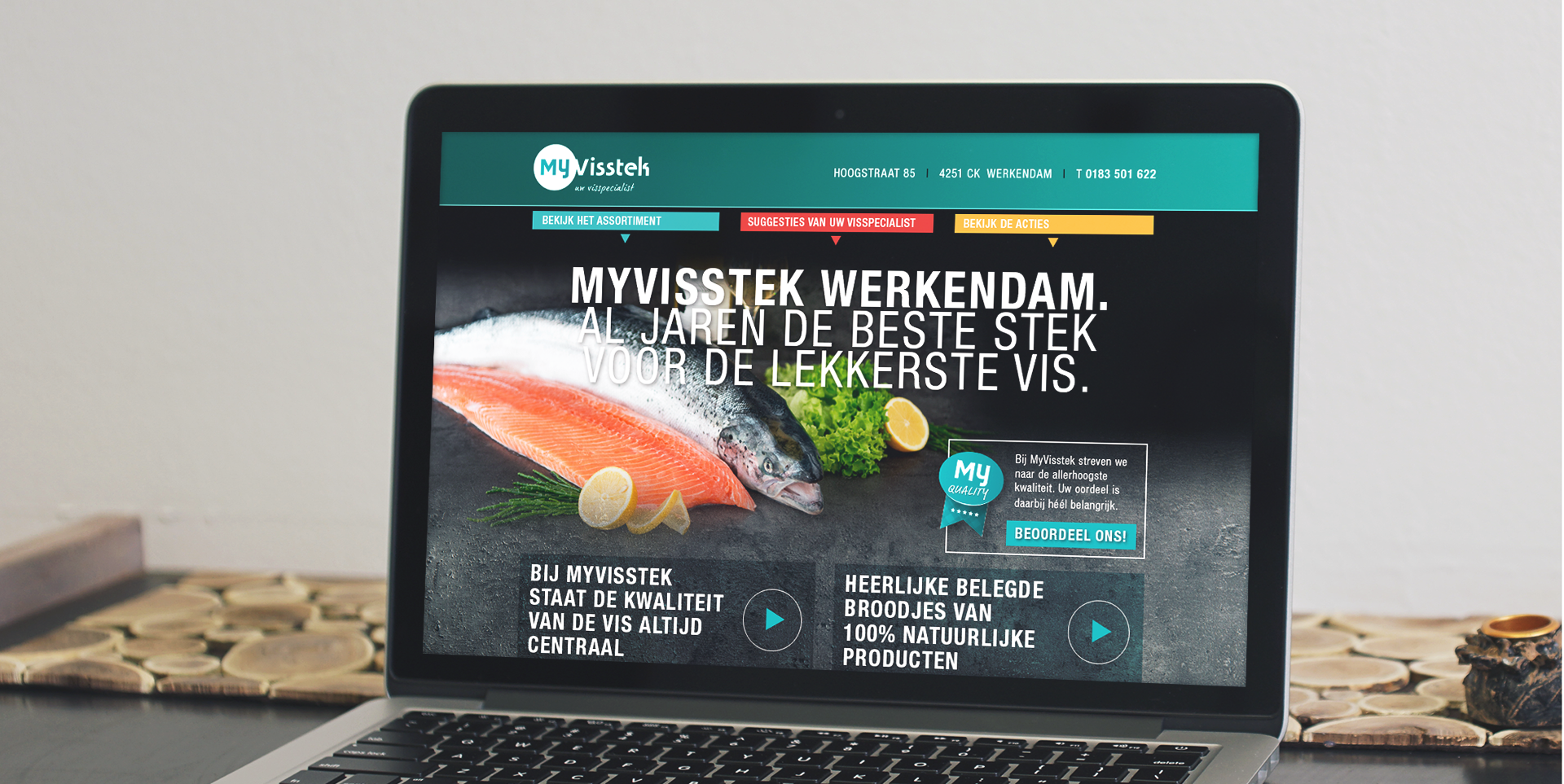 Website MyVisstek