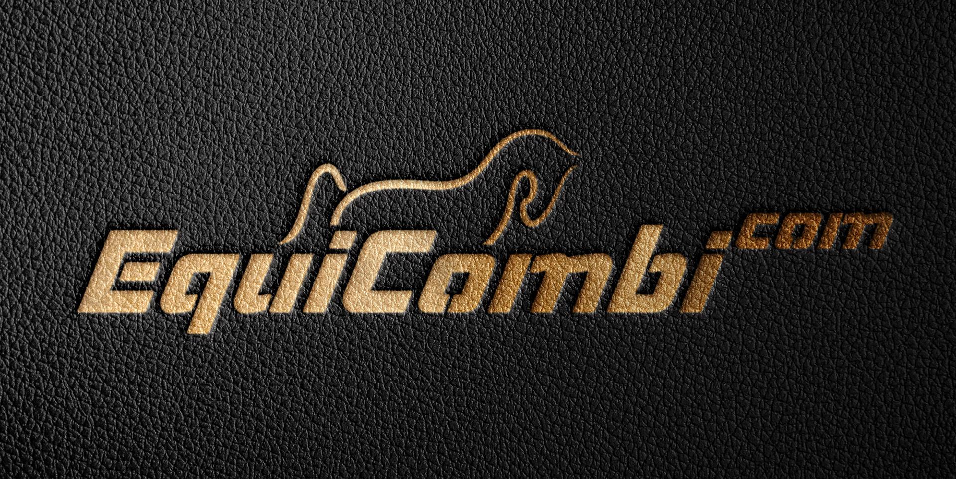 Logo Equicombi.com